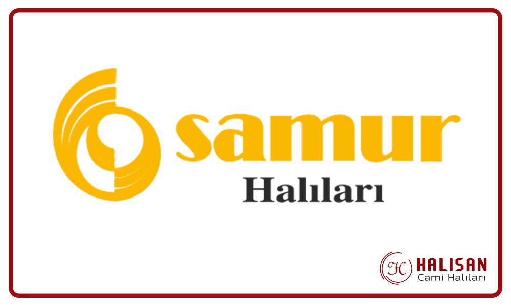 samur-cami-halisi